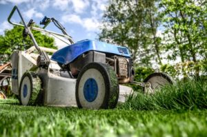 Jak prowadzić nowoczesny biznes ogrodniczy?